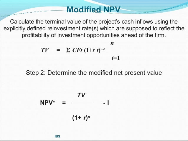 how to calculate net present value of a project pdf